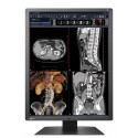 EIZO RadiForce RX250 - 2MP
