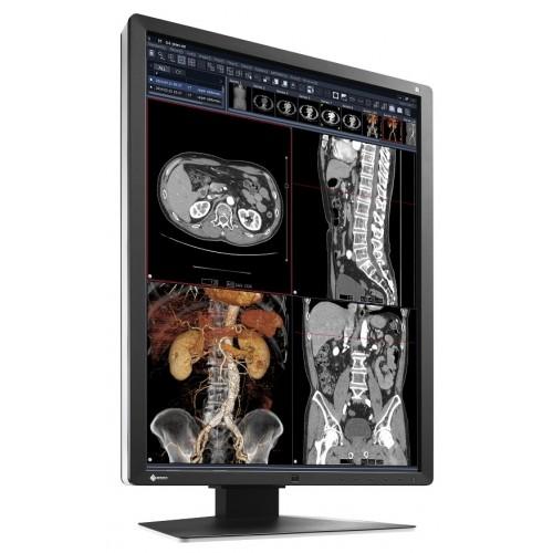 EIZO RadiForce RX250 - 2MP